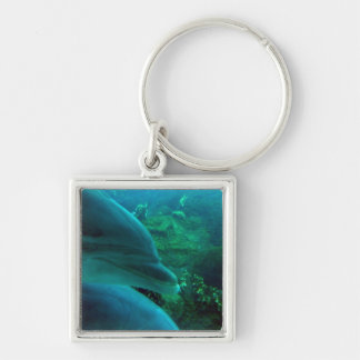 Dolphins Silver-Colored Square Keychain
