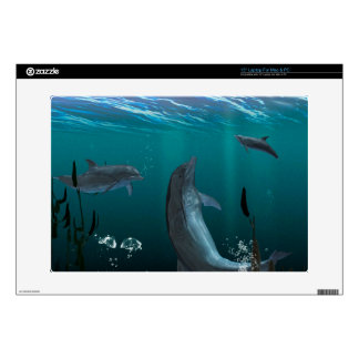 dolphins skin for laptop