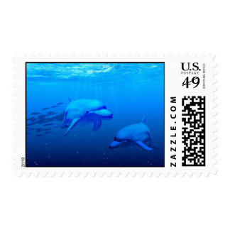 Dolphins Stamp