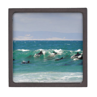 Dolphins surfing a wave keepsake box