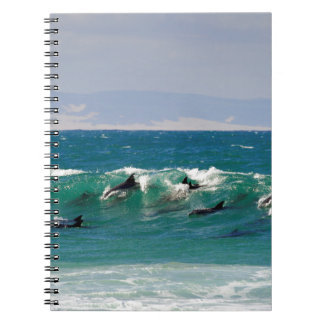 Dolphins surfing a wave notebook