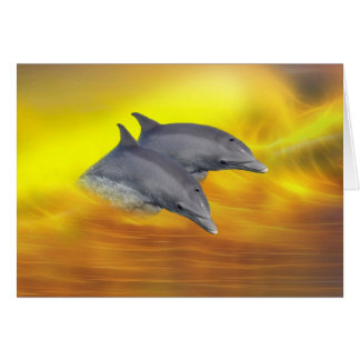 Dolphins surfing the waves card