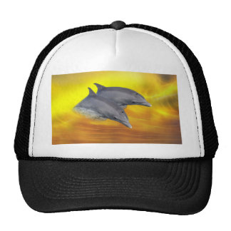 Dolphins surfing the waves hat