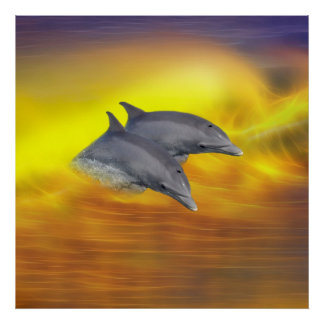 Dolphins surfing the waves poster