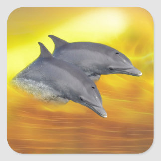 Dolphins surfing the waves square stickers