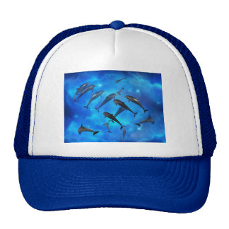 Dolphins swimming in the ocean hat