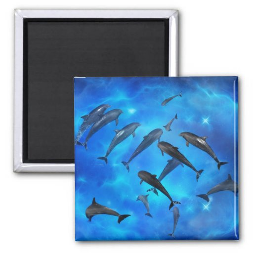 Dolphins swimming in the ocean 2 inch square magnet