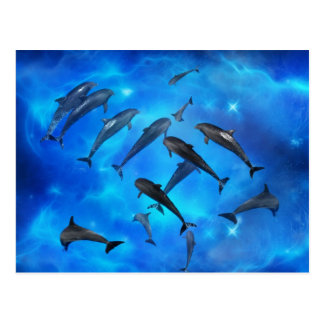 Dolphins swimming in the ocean postcard