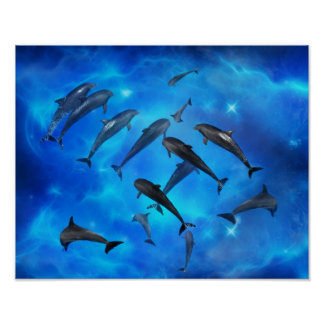 Dolphins swimming in the ocean poster