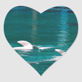 Dolphins swimming upside down as part of the show heart sticker