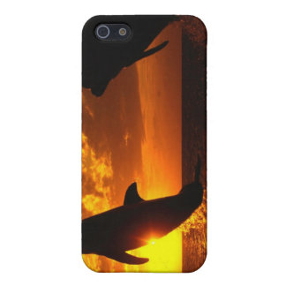Dolphins Symphony at Sunset Cover For iPhone SE/5/5s