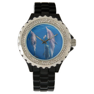 Dolphins under water fashion watch