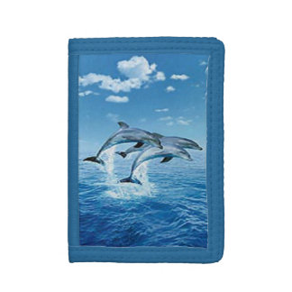 Dolphins Wallet