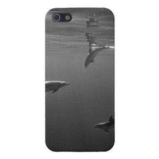 """Dolpin"" iPhone Case"