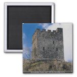 Dolwyddelan Castle, built 1200 by Llewellyn ab lor Fridge Magnets