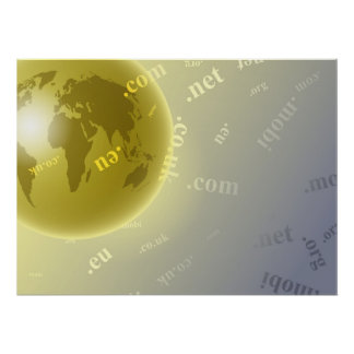 Domain Globe Poster
