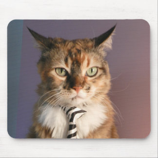 Domestic cat in a business Tie Mouse Pad