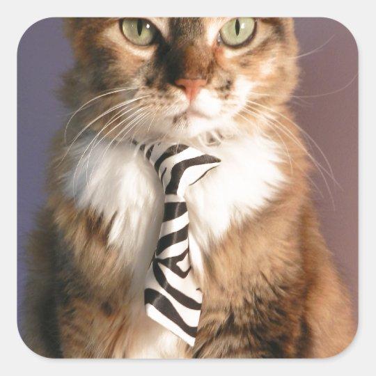 Domestic cat in a business Tie Square Sticker