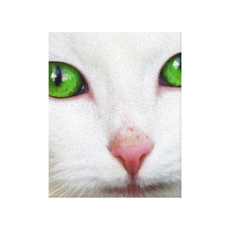 Domestic Cat with Green Eyes Feline Face White Fur Canvas Print