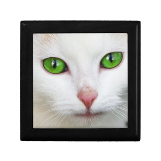 Domestic Cat with Green Eyes Feline Face White Fur Jewelry Boxes