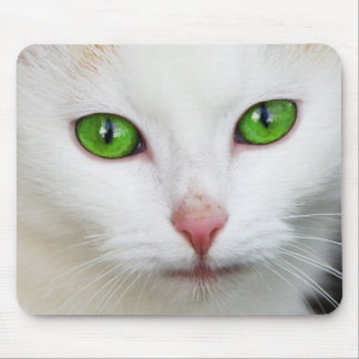 Domestic Cat with Green Eyes Feline Face White Fur Mouse Pad