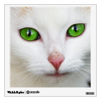 Domestic Cat with Green Eyes Feline Face White Fur Wall Decal