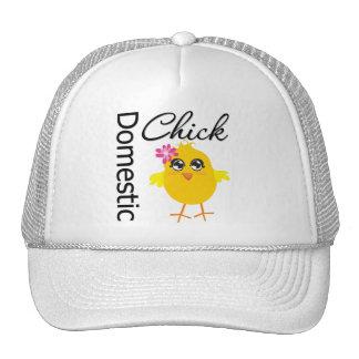 Domestic Chick Trucker Hats