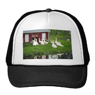 Domestic Geese And Ducks Mesh Hat