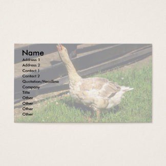 Domestic Goose Business Card