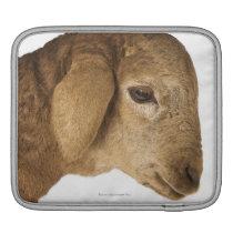 Domestic lamb sleeve for iPads