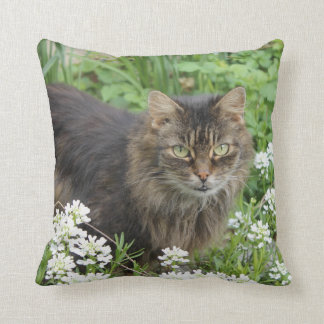 Domestic Long-Haired Cat Throw Pillow
