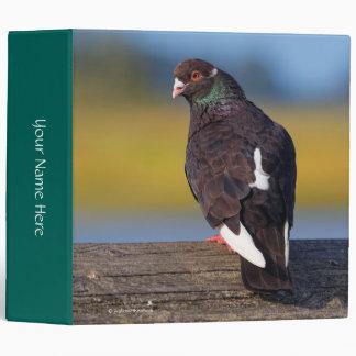 Domestic Rock Pigeon (Dark Morph) 3 Ring Binder