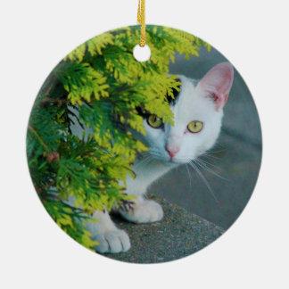 Domestic Short-Haired Cat Peaking Ceramic Ornament