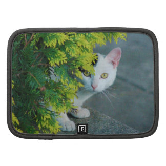 Domestic Short-Haired Cat Peaking Folio Planner