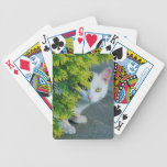 Domestic Short-Haired Cat Peaking Bicycle Poker Deck
