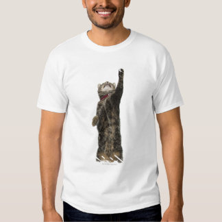 Domestic tabby cat standing on two legs reaching shirt