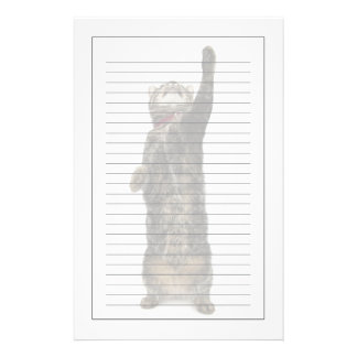 Domestic tabby cat standing on two legs reaching stationery