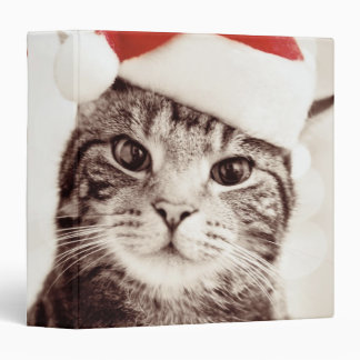 Domestic tabby cat wearing red Christmas hat Binder