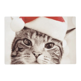 Domestic tabby cat wearing red Christmas hat Placemat