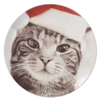 Domestic tabby cat wearing red Christmas hat Party Plates