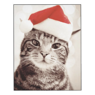 Domestic tabby cat wearing red Christmas hat Wood Wall Art