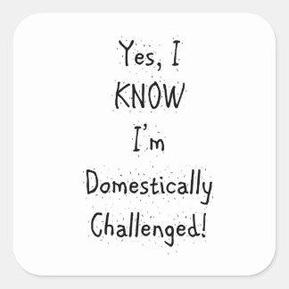 Domestically Challenged Square Sticker