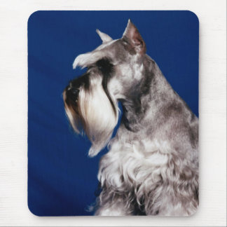 Domesticated Animals 232 Mouse Mat