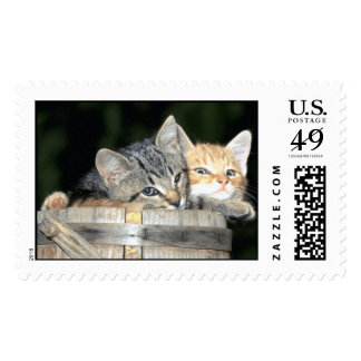 Domesticated Animals 79 Postage Stamp
