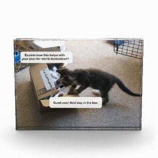Dominación del mundo del gato