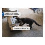 Dominación del mundo del gato felicitacion