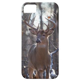 Dominant Buck iPhone 5 Cases