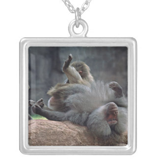 Dominant male Hamadryas baboon being groomed, Square Pendant Necklace