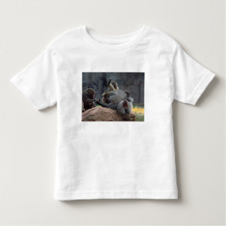 Dominant male Hamadryas baboon being groomed, Toddler T-shirt