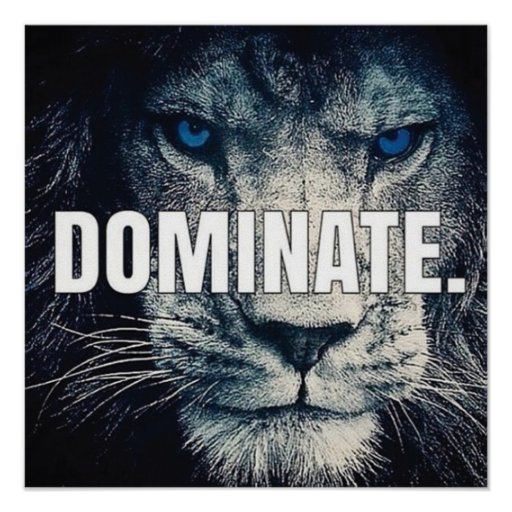 Dominate - Lion Motivational Poster